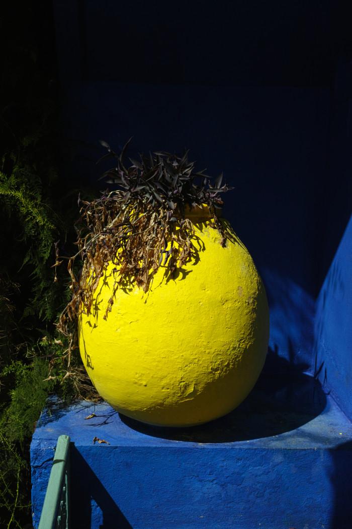 黄色の植木鉢